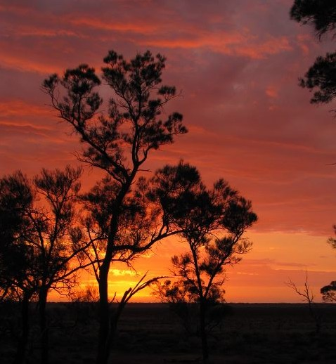 Spectacular sunsets at Murray Sunset National Park in Australia