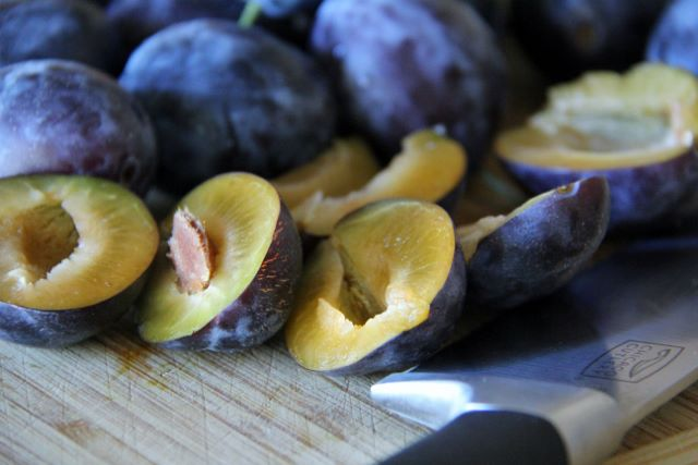 Italian Prune Plums available in the Fall